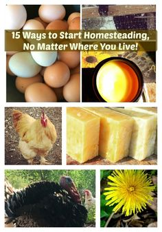 Do you have a homestead dream? A dream of being self-sufficient? Being more empowered in your health and daily life? Here are 15 ways you can start homesteading, even if you live in the city! Even if you are in an apartment. Even if you are in the suburbs! You can homestead now! Find out how to start homesteading!
