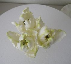 Parrot Tulips (top view) by Petalsweet Cakes | More of the s… | Flickr