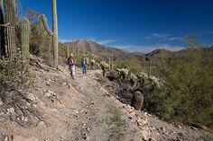 The Arizona Trail, Arizona