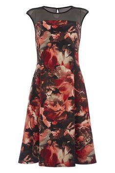 Roman Originals Damen Kleid - Elegantes Cocktailkleid Knielang Mit Blumenmuster - Rot Schwarz Größe 38 Bis 48 Size 16