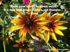"""Raise your words, not your voice. It is rain that grows flowers, not thunder."" ~ Rumi #Inspiration #quotes"
