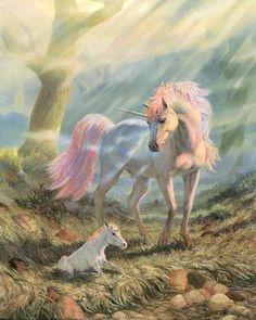 Unicorn 34