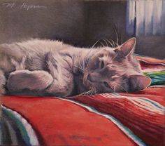 Custom Portraits by Margi Hopkins of Pepper Portraits