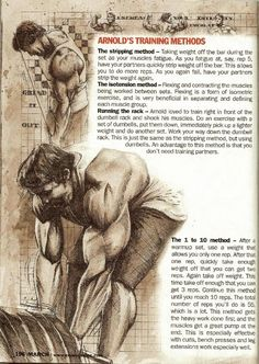 PART 7: Training Secrets Of The Oak - #bodybuilding #fitness #fit #xfit #crossfit #motivation #inspiration #strength #power #muscle #musclemass #mass #strong #training #workout #musclegains #diet #healthy #livingwell #MyBSisBoss