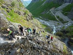 """Kløvstien is an old road between Romsdal and Sunnmøre, and it was an important path before Trollstigen opened in 1936. The hike starts in Isterdalen and continues up the hillside along Stigfossen. For centuries the local market """"Romsdalsmartnan"""" on Devold was very important for trade and relations in this area. Park at the info sign in Isterdalen, RV63, and follow the marked trail in the woods until the Trollstigen road starts. Further up the trail goes on the side of the Stigfossen..."""