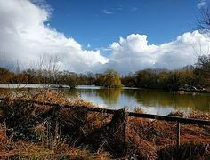 Managed a quick walk around #BrittenPond between the rain showers. Amazing no. of people fishing #Surrey
