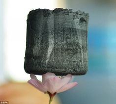 Graphene Aerogel is the lightest solid ever built. Here it is placed on top of a cherry blossom.