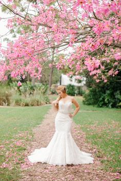 Spring bridal portraits are stunning! Consider scheduling your shoot around the blooms of your favorite spring flowers and trees. by Catherine Ann Photography.