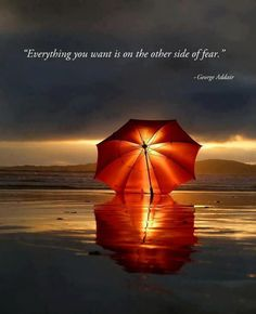 Truth indeed... face the fear and when you do you will discover on the other side of it, ultimately you will have nothing to fear.  Jesus told us to 'fear not' on many occasions... now I know why!  ~o~  Rejoicing