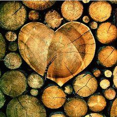 My Wooden Heart
