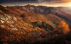 Download wallpapers autumn, mountain landscape, sunset, yellow trees, autumn landscape, Canada
