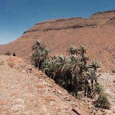 """Oasis...#morocco #berber #love #travel #summer #bakchic"" Photo taken by @bakchic_thelabel on Instagram"