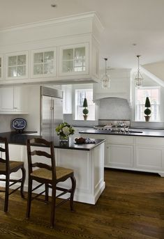 White Kitchen Cabinets with Black Countertops - Transitional - kitchen - Kate Coughlin Interiors
