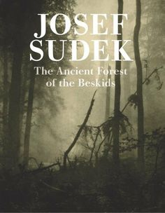 Josef Sudek, Ancient Forest of the Beskids