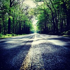 A person often meets his destiny on the road he took to avoid it. - Jean de La Fontaine