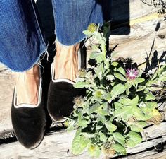 Venetian, Chelsea Boots, Espadrilles, Slippers, Shoes, Fashion, Shopping, Espadrilles Outfit, Moda