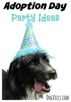 Want to celebrate the arrival of your new family friend in style? Check out these fun dog adoption day party ideas to give your canine a grand welcome!