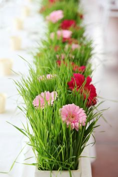 Spring wedding season is coming and we continue sharing cool ideas for spring nuptials. Today's roundup is dedicated to spring table runners, which create . Daisy Centerpieces, Daisy Decorations, Grass Centerpiece, Modern Centerpieces, Spring Wedding Decorations, Centrepieces, Gerbera Daisy Wedding, Wedding Flowers, Wedding Bouquet