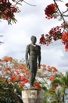 Chief Quipuha statue in Hagåtña, Guam, USA. Beautiful Islands, Beautiful World, Beautiful Places, Wake Island, Island Girl, Guam Flag, Northern Mariana Islands, Marshall Islands, Pacific Coast