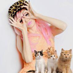 punx cats, cats, kitties, audrey kitching, pink hair, leopard hat, peach dress, editorial, kittens, buzznet