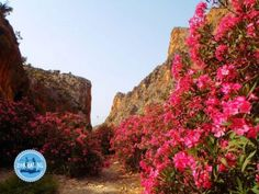 wandernurlaub in Griechenland Wandern Griechenland Wanderreisen Griechenland wandern in Griechenland Wanderurlaub in Griechenland Hani, Best Foundation For Oily Skin, Crete Greece, Monument Valley, In The Heights, Island, Country Roads, Outdoor, Vacations