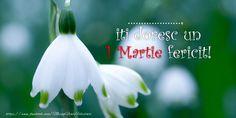 iti doresc un 1 Martie fericit! 2nd Birthday, Martie, Image