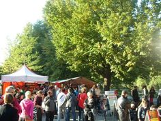 Weekend market / Maybachufer in Neukölln / Kreuzberg