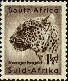 Postage Stamps South Africa 1954 Wild An. - South Africa 1954 Wild Animals SG 153 Leopard Fine Used SG 153 Scott 202 Other South African Stamps - African Safari, African Animals, Union Of South Africa, African Union, Sell Stamps, Postage Stamp Art, Stamp Collecting, Mammals, History