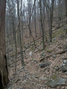 One side of Blue Mountain, took while hiking the Appalachian Trail. AT Feb 2013