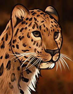 How to Draw a Leopard Head, Step by Step, Rainforest animals, Animals, FREE Online Drawing Tutorial, Added by Dawn, September 2, 2013, 6:59:27 am