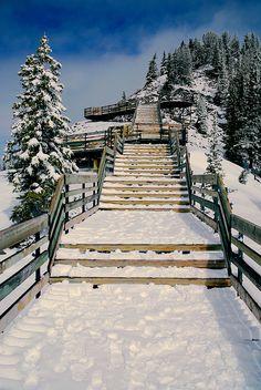 """Sulphur Mountain"" -- [Banff, Canada]~[Photograph by Brady Fang (Shanghai) (Wei Fang) - May 28 2010 - Banff, Alberta, Canada]'h4d'121216"