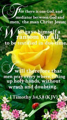 1 Timothy 3:4,5,8 KJV Bible Verses Kjv, Scripture Cards, Bible Words, Favorite Bible Verses, Bible Quotes, Inspirational Scriptures, Uplifting Thoughts, Spiritual Thoughts, Spiritual Quotes