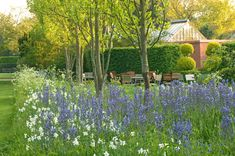 Farms Living, Garden Spaces, Norfolk, Tea, Landscape, Flowers, Plants, Outdoor, Room