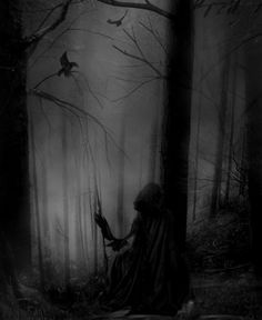 a foggy forest. A cloaked figure. what's not to like?...-eh