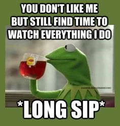 Kermit meme. Funny quote. Stalkers
