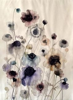 Lourdes Sanchez, anemone field #8 2014, watercolor