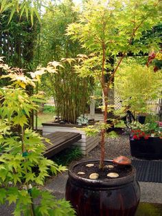 Japanese Garden Landscaping Design, Pictures, Remodel, Decor and Ideas - page 26