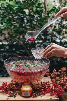 Tree of Life Blog: Very Berry Rosé Punch