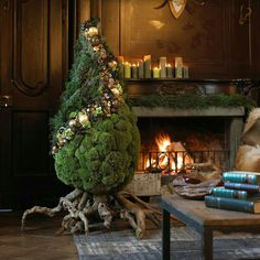 Loving this tree... the natural vibe with kind of a topiary look... wonder what was used on the bottom section???