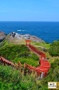 """山口県の日本海を望む『元乃隅稲成神社』  A Shinto Bridge Path that comes all the way from the """"Motonosumi Inari Shrine"""" --> leading directly to JAPAN SEA (Nihonkai/日本海). In Nagato, Yamaguchi-prefecture, Japan"""