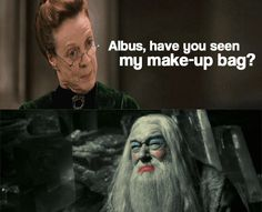 Albus, have you seen my make-up bag?