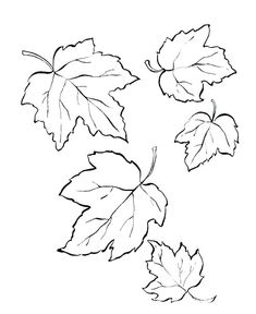 50 Free Autumn - Fall Coloring Pages for Kids Printable / Free Printable Coloring Pages for Kids - Coloring Books Fall Leaves Coloring Pages, Leaf Coloring Page, Coloring Pages To Print, Coloring Book Pages, Printable Coloring Pages, Coloring Pages For Kids, Coloring Sheets, Free Coloring, Kids Coloring