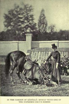 Marie in Gödöllö Sissi, 10. September, Medieval, Kaiser Franz, Side Saddle, Old Portraits, Elisabeth, Wild Hunt, Her World