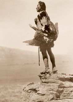 A Hidatsa man with an eagle, in 1908. Native American photographs Edward S. Curtis/Library of Congress