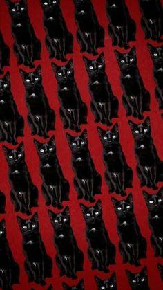 Chilling Adventures Of Sabrina Sabrina's Dark World Netflix Bakgrundsbilder Svartvita bilder. Wallpaper Mundo, More Wallpaper, Wallpaper Backgrounds, Audrey Horn, Netflix, Kiernan Shipka, Sabrina Spellman, 3d Printed Jewelry, Halloween Wallpaper