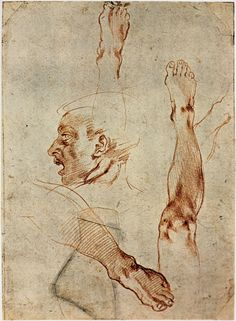 Michelangelo: Figure Drawings, Part 3