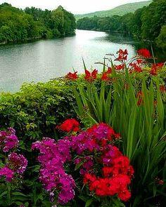 """519 """"Μου αρέσει!"""", 14 σχόλια - 135 (@zaahra135) στο Instagram: """"#بسم_الله_الرحمن_الرحيم🌸🌹 🌸  سلام طاعات و عبادات قبول 🌸شبتون شار از استجابت دعا ، برکت و سلامتی،…"""" Plants, Plant, Planets"""