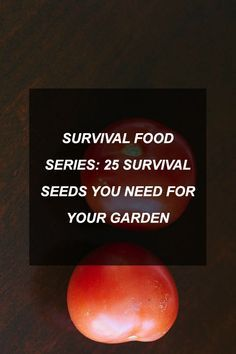 Survival Food Series: 25 Survival Seeds You Need For Your Garden | Survival Shelf | Survivalist & Prepper Links