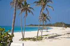 Bimini, Bahamas .