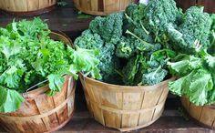 Calcium 101  sources of calcium in a plant-based lifestyle